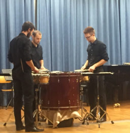 Palladrum Trio